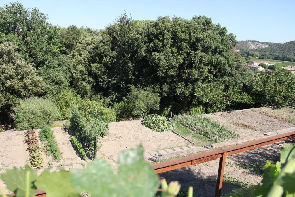 proprièté parc piscine Anduze Corinne Ponce Immobilier Nimes Gard (7)