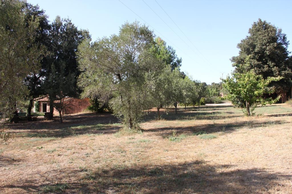 villa piscine Gard Vaucluse  (21)