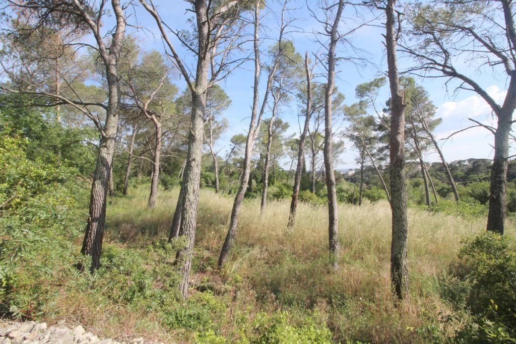 terrain constructible nimes calvas route d uzes arret de bus corinne ponce immobilier (2)